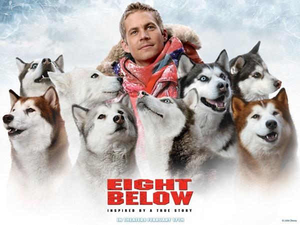 Kutup Macerası / Eight Below